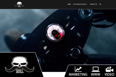 strona internetowa z video skull customs